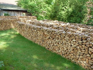 Günstig Brennholz Kaminholz Kaufen in Heiligenwald - Saarland