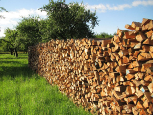 Günstig Brennholz Kaminholz Kaufen in Blankenrath - Rheinland-Pfalz