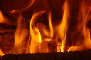 hartholz briketts kaufen als alternative zu brennholz