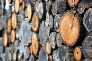 Lagerung von Holz zum Herstellen von Kaminholz