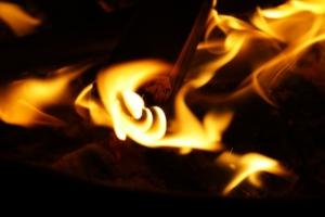 brennwert und heizwert von kaminholz