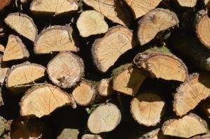 eichenholz scheite als kaminholz