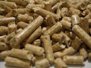 Holzpellets günstig bestellen in Nuthetal